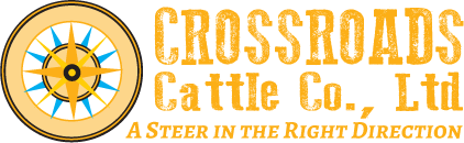 Crossroads Cattle